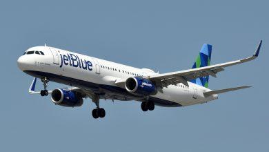 Photo of Ave impacta avión que salió del AILA con destino a EEUU; no hubo heridos