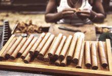 Photo of La industria del tabaco tiene plan que podría revivir la economía