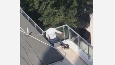 Photo of Mira como este hombre patea a un perro indefenso