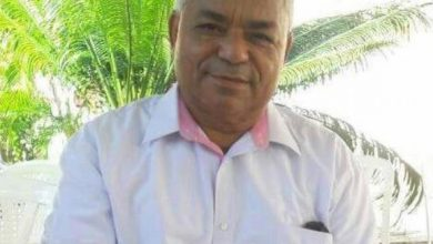 Photo of Medio Ambiente suspende a director provincial de La Vega tras otorgar certificado de tala de árboles